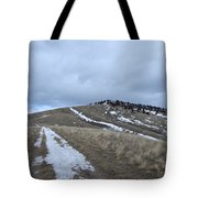 Intermittent Path Tote Bag