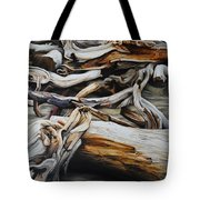 Intertwined Tote Bag by Chris Steinken