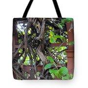 Intertwined Vine Trellis Tote Bag