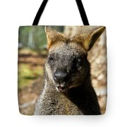 Interview With A Swamp Wallaby Tote Bag