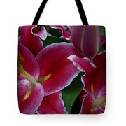 Intimate Tote Bag