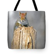 Intimate Look Tote Bag