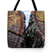 Intimately Separate Tote Bag