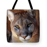 Into His Eyes Tote Bag