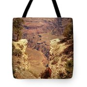 Into The Canyon Tote Bag by Susan Rissi Tregoning