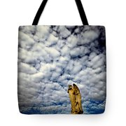 Into The Firmanent Tote Bag