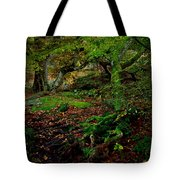 Into The Forest Of Fontainebleau Tote Bag