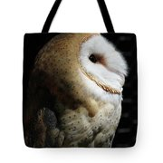 Into The Light #2 Tote Bag