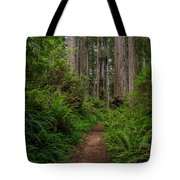 Into The Redwoods Tote Bag