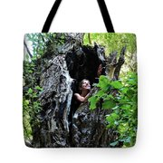 Into The Tree Tote Bag