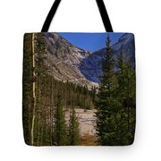 Into The Valley Tote Bag
