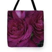 Intrigue Rose Tote Bag