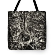 Intwined Tote Bag