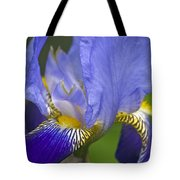 Invitation To Blue Tote Bag