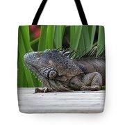 Iquana Tote Bag