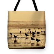 Iquique Chile Seagulls  Tote Bag