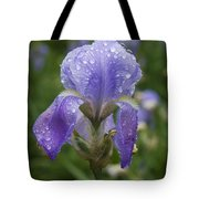 Iris After Rain Tote Bag