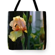 Iris Along The Fence 6731 H_2 Tote Bag