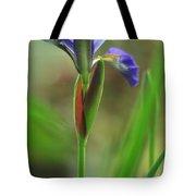 Iris Caesar's Brother Tote Bag by Rebecca Sherman