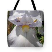 Iris Eyes Tote Bag