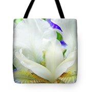 Iris Flower Art Print White Blue Purple Irises Baslee Troutman Tote Bag