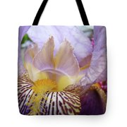 Iris Flower Art Purple Lavender Irises Giclee Prints Baslee Troutman  Tote Bag