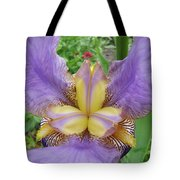 Iris Flower Lavender Purple Yellow Irises Garden 19 Art Prints Baslee Troutman Tote Bag