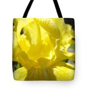 Iris Flower Yellow Macro Close Up Irises 30 Sunlit Iris Art Print Baslee Troutman Tote Bag