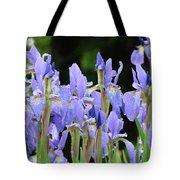 Iris Flowers Art Print Blue Purple Irises Spring Rain Tote Bag