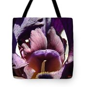 Iris Flowers Purple Irises Artwork Prints Framed Canvas Cards Nature Gardens Tote Bag