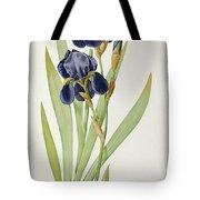 Iris Germanica Tote Bag