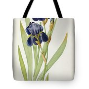 Iris Germanica Tote Bag by Pierre Joseph Redoute