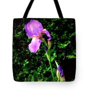 Iris In Sunshine Tote Bag