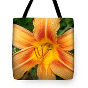 Iris In The Morning Tote Bag