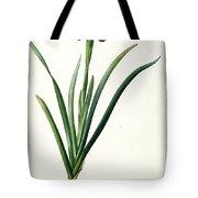 Iris Luxiana Tote Bag by Pierre Joseph  Redoute