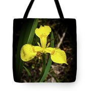Iris Of The Marshes - 1 Tote Bag