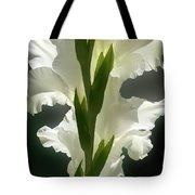 Gladiolus Spectacular #2 Tote Bag