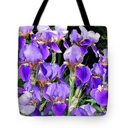 Iris Splendor Tote Bag