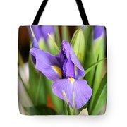 Iris Unfolding II Tote Bag