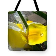 Irises Artwork Iris Flowers Art Prints Flower Rain Drops Floral Botanical Art Baslee Troutman Tote Bag