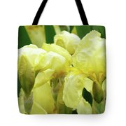 Irises Flower Garden Yellow Iris Baslee Troutman Tote Bag