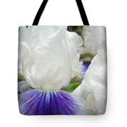 Irises Flowers Art Print Gifts White Purple Iris Flower Tote Bag