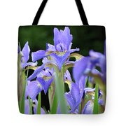 Irises Flowers Art Prints Blue Purple Iris Floral Baslee Troutman Tote Bag