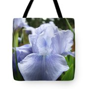 Irises Light Blue Artwork Iris Flowers Baslee Troutman Tote Bag