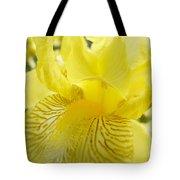 Irises Yellow Brown Iris Flowers Irises Art Prints Baslee Troutman Tote Bag