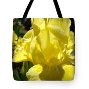 Irises Yellow Iris Flowers Floral Art Prints Botanical Garden Artwork Giclee Tote Bag