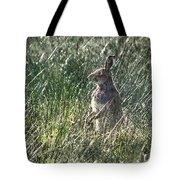 irish Hare Tote Bag