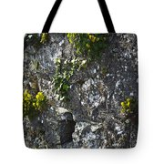 Irish Stone Flowers Tote Bag