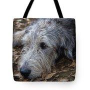Irish Wolfhound Ivan Tote Bag
