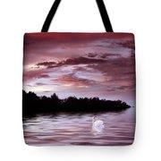 Sunset Swim Tote Bag